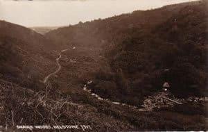 views-3040-skaigh-valley-chapman-card-no-7317-no-postmark-ag-cw