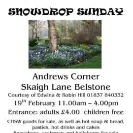 Snowdrop Sunday – 19th February