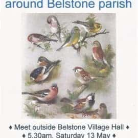Dawn Chorus Walk – Saturday 13 May