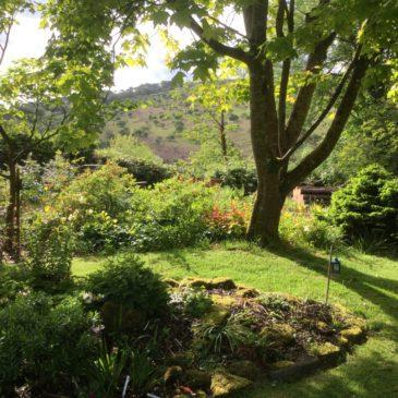 NGS Garden Open – Andrews Corner