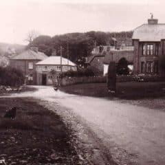 Chapman Postcard - 18607