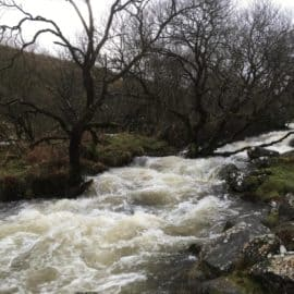 The Angry Beauty of the River Taw