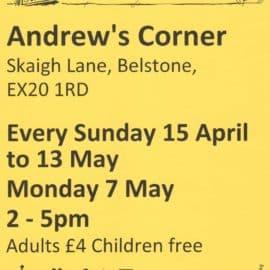 Andrew's Corner Garden Belstone – Open Sunday 2-5pm